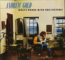 ANDREW GOLD what's wrong with this picture K53052 uk asylum 1976 LP PS VG/EX