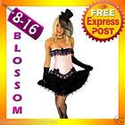 8811 Burlesque Pink Moulin Corset Skirt 8 10 12 14