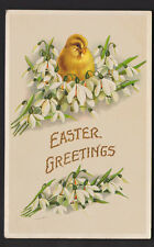 VINTAGE 1910 EASTER GREETINGS CHICK SITTING IN SNOWDROP FLOWERS POSTCARD emboss
