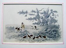 DRAWINGS HUNTING GROUSE IN A HILLY LANDSCAPE PENCIL ENGLISH SCHOOL C1840