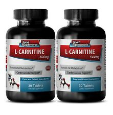 L-Carnitine 500mg  .Is a Non-Essential Amino Acid for Good Health 2 Bottle