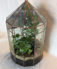 Six Sided Mirror back Clear Glass Terrarium Handmade In The U.K. Planter
