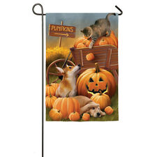 Bombs Away! Cat Knocking Pumpkins On Dogs 2 Sided Small Banner Flag 12.5x18""