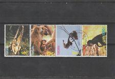 Tanzania - Dieren/Animals/Tiere  (Apen/Monkeys/Affen)