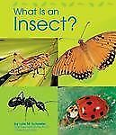What Is an Insect? (Animal Kingdom)-ExLibrary