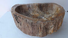 Hand-crafted basin made of petrified wood stone fossil Sink DP880 cm 55x38x15