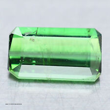 1.68 CT NATURAL! GREEN NIGERIA TOURMALINE OCTAGON BEAUTIFUL