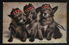 WW1 Postcard Scottish Soldier Dog Pups South End Northallerton Yorkshire DL6