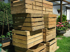 6 x APPLE in legno vintage Europea FRUTTA Crate Scaffale Display Armadietto **