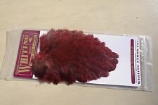 WHITING FARMS FLY TYING FEATHERS COQ DE LEON HEN SADDLE SPECKLED RED