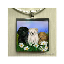 TEACUP POODLE DOGS DAISY NECKLACE JEWELRY CHARM ART PET GIFT GLASS TILE PENDANT