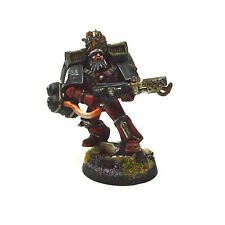 BLOOD ANGELS Sanguinary Priest with flamer Converted #2 PLASTIC PRO PAINTED 40K