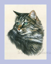 Maine Coon Cat Print Jade Eyes by Irina Garmashova