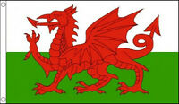 5' x 3' Wales Flag Welsh Red Dragon Flags Banner