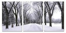 "41"" FRAMED Hot Modern Contemporary Canvas Wall Art Print Painting Winter Snow"