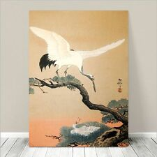 "Beautiful Asian Bird Nature Art ~ CANVAS PRINT 8x10"" ~ Crane & Nest"