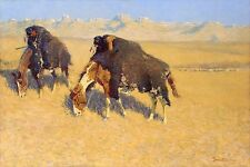 Frederic Remington 1908, BUFFALO, AMERICAN INDIANS, 20x12 CANVAS WALL ART