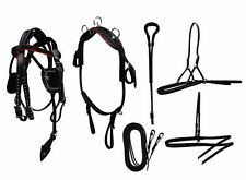 Mini Horse / Small Pony Size Leather Show Harness Set.