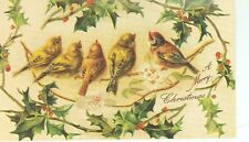 CHRISTMAS GREETING BIRDS ON HOLLY LEAVES REPRODUCTION ON POSTCARD (X-75)