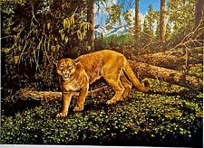 """SIGNED Norman Adams """"Western Cougar"""" [20 3/4 x 19 3/4] Limited Print (366/1000)"""