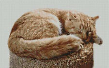 "Ginger Cat Counted Cross Stitch Kit 11"" x 7"" C2115"