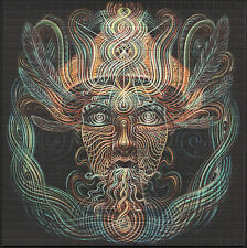 THE SHAMEN AMANDA SAGE BLOTTER ART ALEX GREY