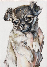 ACEO Fine Art Giclee Print Chihuahua Dog Puppy Original By Artist DLarson