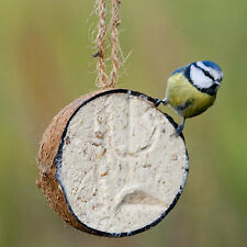 20 X COCONUT HALVES FAT FEEDER QUALITY BIRD FEED ATTRACT WILDLIFE TO YOUR GARDEN