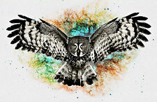 Framed Print - Colourful Abstract Flying Owl (Picture Poster Art Animal Bird)