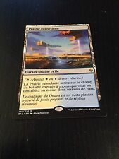 MTG MAGIC BATTLE FOR ZENDIKAR PRAIRIE STREAM (FRENCH PRAIRIE RUISSELANTE) NM