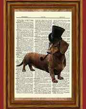 Steampunk Dachshund Wiener Dog Dictionary Curious Art Print Poster Picture OOAK