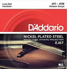 D'ADDARIO EJ67 LOOP-END NICKEL ELECTRIC MANDOLIN STRINGS -- MEDIUM GAUGE