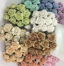 25 Soft Tone Mix Paper Flower Rose DIY Wedding bouquet Scrapbook Craft ZQR3-426