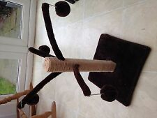 Cat Scratching Post and hanging toys