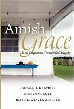 Amish Grace : How Forgiveness Transcended a Tragedy by Donald B. Kraybill,...