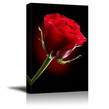 """Canvas Prints - Closeup of Red Rose Flower Against Black Background - 16"""" x 24"""""""