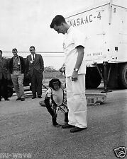 1961-First Hominid Launched into Space-Ham the Chimpanzee-Space Program Begins