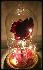 Beauty and the Beast Enchanted Rose **Last Orders 4 Mothers Day 21/3/17 *FROSTY*