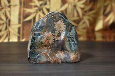 """natural chrysanthemum stone from near Neo-dani 8.5cm 3 3/8"""""""