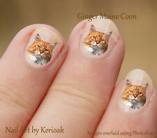 Ginger Maine Coon 24 Unique Designer Cat Nail Art Stickers Decals