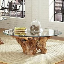 Amazing Natural Teak Root Ball Cocktail Coffee Table w/Glass Top ,40''D x 17''H.