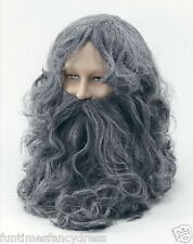 Mens Hagrid Grey Wizard Wig & Beard Fancy Dress Lotr