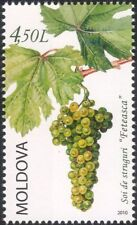 Moldova 2010 Grapes/Wine/Alcohol/Plants/Nature/Horticulture/Farming 1v (n44952)