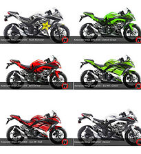 Kawasaki Ninja 300 / 250i Decal Sticker Graphic Kit