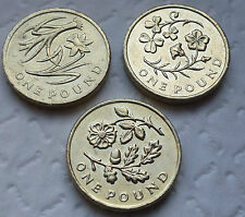 SET OF 3 FLORAL £1 ONE POUND COIN HUNT - ENGLAND WALES N IRELAND ++++