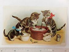 Adorable Anthropomorphic Cats Kitten Making Christmas Cake Victorian Card F46