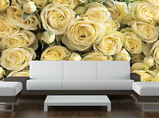 Flowers Cream White Roses Floral Wall Mural Photo Wallpaper GIANT WALL DECOR