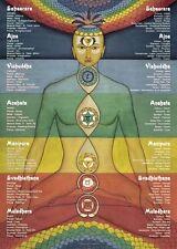 Chakra energías Gráfico A3 chakras Poster