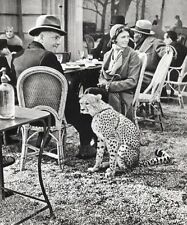 1930/66 Vintage MAN WOMAN & CHEETAH France Photo Art 11x14 By ALFRED EISENSTAEDT