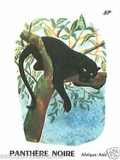 CARD BON POINT Leopard Black panther Panthera pardus PANTHERE NOIRE 60s